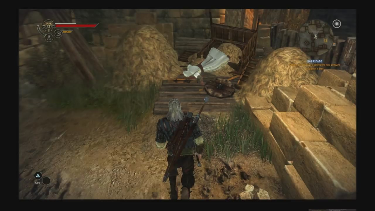 Altair Misses The Haystack In The Witcher 2