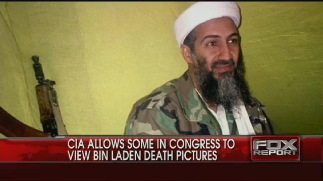 Senator Describes Bin Laden Photos, Brain, Underwear