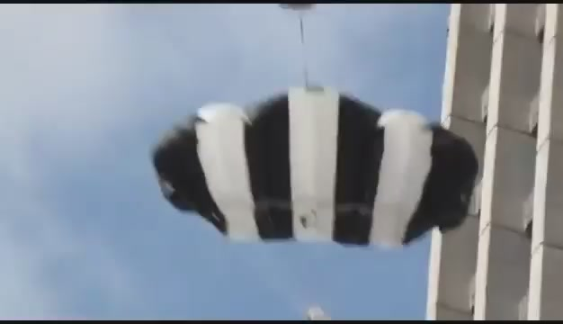 Video: BASE Jumper Fails And Miraculously Survives Unharmed
